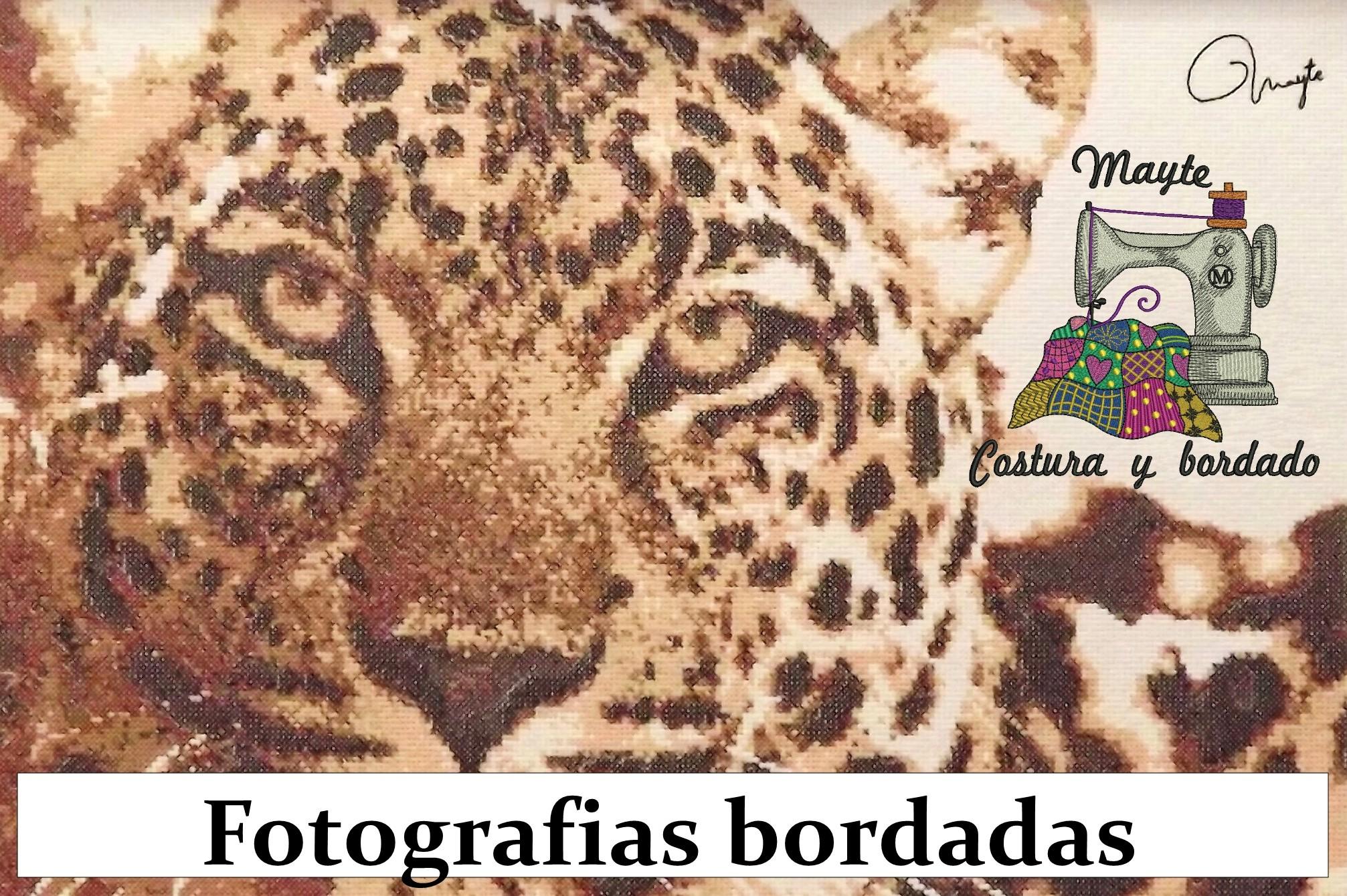 leopardo%20boton%20web.jpg